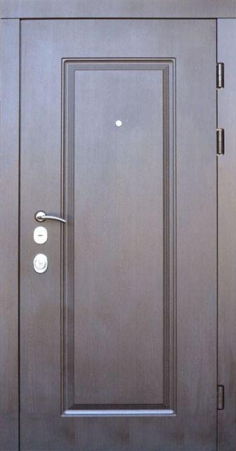 Входная дверь Steelguard DP-1